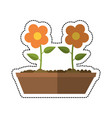 cartoon pot flower garden image vector image vector image