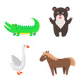 concept of goose horse bear crocodile for kids vector image