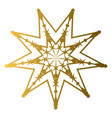 isolated golden star shape vector image
