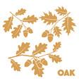 oak branch set vector image vector image