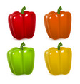 realistic detailed color pepper set vector image vector image