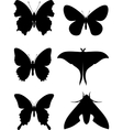 Butterfly set 01 vector image vector image