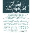 Elegant calligraphic letters set vector image vector image