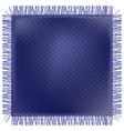 Flap threadbare jeans fabric vector image