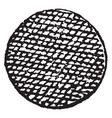 roundlet guzes have balls used in armory vintage vector image vector image