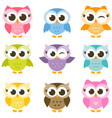 Set of cute colorful owls isolated on white