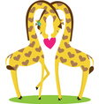 two giraffes male and female nestled together in t vector image vector image