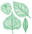 green leaf silhouettes set vector image vector image