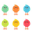 cute easter spring chickens isolated vector image