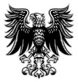 eagle heraldry in classic pen style vector image