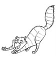 tabby cat stretches and yawns widely vector image