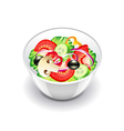 Vegetables salad isolated on white vector image vector image