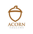 acorn graphic design template vector image vector image