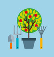 beautiful garden flat icons vector image vector image