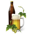 beer mug hop bottle vector image vector image