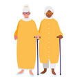 cute grandmothers couple interracial characters vector image vector image