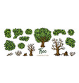 landscape trees constructor set trees leaves and vector image