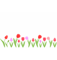 Tulip Abstract flowers on white background vector image vector image