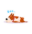 cartoon sleeping dog portrait cute resting puppy vector image