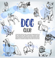 background with hand drawn dogs breeds sketch vector image