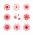 blossom vector image vector image