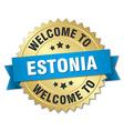 Estonia 3d gold badge with blue ribbon vector image vector image