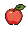 hand draw colored sketch red apple with leaf vector image