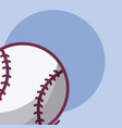 baseball game sport equipment vector image vector image