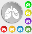 Lungs icon sign Symbol on eight flat buttons vector image