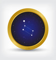 lura constellation in golden circle vector image vector image