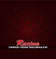 racing fibre background vector image