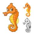 Seahorse vector image