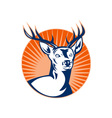 Stag deer or buck with sunburst vector image vector image