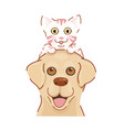 adorable labrador retriever dog carry cute kitten vector image vector image