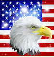 american eagle flag vector image