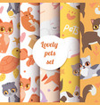 cute animals cats seamless pattern with lovely vector image vector image