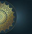 elegant mandala design vector image vector image