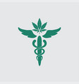 medical marijuana leaf logo design template vector image