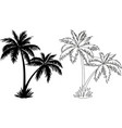 Palm Trees Silhouettes and Contours