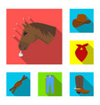 rodeo competition flat icons in set collection vector image vector image
