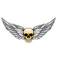short angle wings with unique human dead vector image vector image