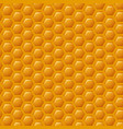 a natural background with honeycombs vector image