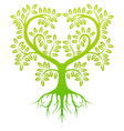 green tree silhouette vector image