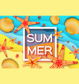 origami clam mollusc shells summertime beautiful vector image