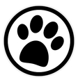 Paw button on white vector image vector image