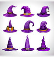 cartoon purple witch hats fantasy caps icons set vector image