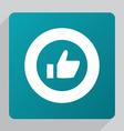 flat ok icon vector image