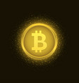 golden bitcoin coin vector image vector image