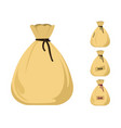 money bag icons vector image