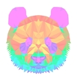 panda2 head polygon isolated vector image vector image